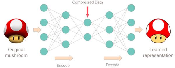 keras autoencoders applications